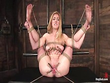 Hogtied - 2008. 12. 30 - Darling