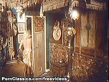 Kay Parker In The Very Best Of Kay Parker Video