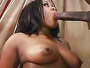 Busty Big-Assed Mulatta Takes A Big Cock