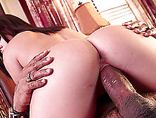 Busty Keisha Grey Sucks A Fat Black Cock And Jumps On It