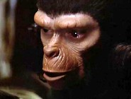 Battle For The Planet Of The Apes (1973) - Part 2