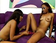Slim Ebony Lesbians Kapri Styles And Tina Price Underss To Tease
