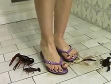 Liza Flip Flop Crawadads