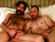 Bluecollar Gay Bear Sucks Hard Cock