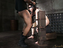 Slim White Bitch Amy Faye Gets Belted Down Onto Sybian And Mouth