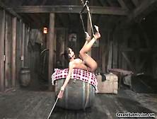 Daisy Marie Videos