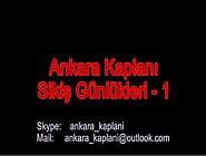 Ankara Kaplani