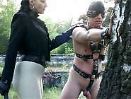 Outdoor Bullwhipping