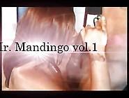 Mr.  Mandingo Vol. 1...  Ebony Edition