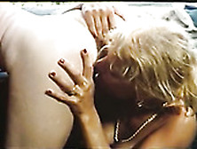 Curly Brunette In Black Stockings Annette Haven Gives Blowjob