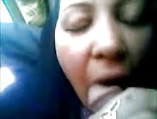 Hijap Queen Of Suck