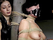 Is Elise Ready To Be Tied Up And Tortured In Such A Painful Way?