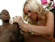 Hot Blonde Teen With Natural Boobs Gets Fucked By A Black Co...