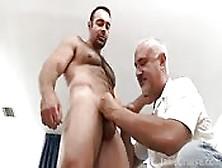 Un Gay Peloso E Nonno