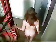 Brunette Hair Wife Walking Stripped In Public