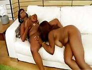 Curvy Nipple And Pussy Sucking Black Lesbians