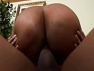 Black Booty Loves Black Cock - Black Market