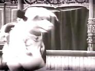Big Boobs Huge Bouncing Tits Compilation