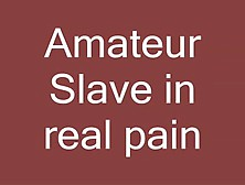 Amateur Slave In Great Pain - Xhamster. Com