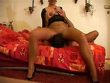 Chick In Nylons Sits On His Face