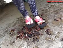Cosmi-Flip Flops Crawadads