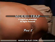 Old / Young Model Trap 2