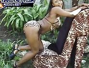 Busty Black College Freak Striptease By Vida Valentine