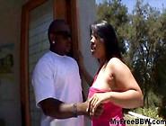 Kya Tropic Phat Asian 2 Bbw Fat Bbbw Sbbw Bbws Bbw Porn Plumper