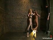 Lesbian Slave Training Ariel Xfeatured Trainer-Aiden Starr