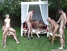A Cena De Sexo Grupal Ao Ar Livre Com Muitas Estrelas Porno
