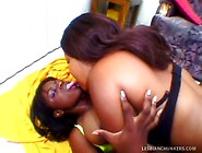 Huge Titty Ebony Lesbos Go Arse To Anus On Twin Ended Dong