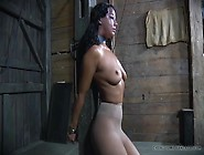Sexy Whipping Of A Bound Girl In Sub Space
