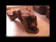 African Amateur Porn