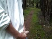 Se Masturber Dans La Forêt