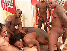 Hot Group Banging With Naughty Porn Hottie Nyomi Banxxx In Nasty