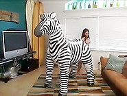 4 Girls 1 Zebra