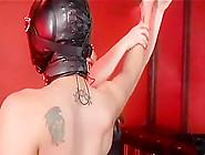 Mistress Jemini Loves Cbt