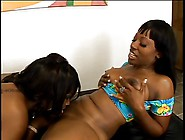 Two Thick Hot Black Lesbian Bitches Oil Up Their Asses And Lick