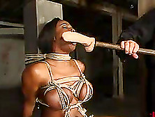 jada fire and sara jay nude