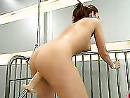 Playful Brunette Sucks Big Dildo And Gets Toyed By A Machine