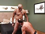 Taking Care Of A Huge Black Cock