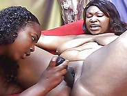Horny Lesbian Bbws Fucking With A Strapon