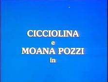 Die Verkommenen Schwestern Cicciolinai