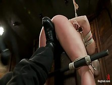 Pleasing Chastity Lynn Performing In Bdsm Video