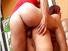 Transexual Cock Fights Round Two - Scene 4