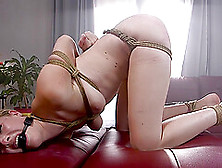 Bondage Experience And Hard Sex Is Priceless With Ashley Lane