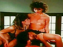 Christy Canyon Vintage Tube Search 366 Videos