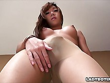 Hot Ladyboy In Stockings Masturbating